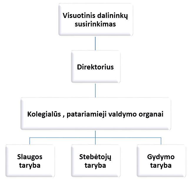 struktūra2